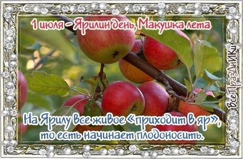 https://pp.userapi.com/c639731/v639731420/2d95f/cp-uETeF78E.jpg