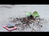 Айдамир Мугу - Капризная  Official Music Video HD_HD.mp4