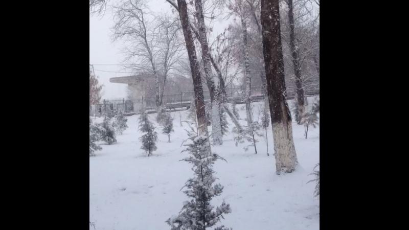 Зима нечаянно нагрянет, когда её совсем не не ждёшь))