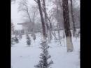 Зима нечаянно нагрянет, когда её совсем не не ждёшь
