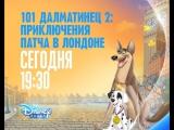 Мультфильм «101 далматинец 2: Приключения Патча в Лондоне / 101 Dalmatians II: Patchs London Adventure» на Канале Disney!