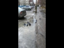Ноябрьские постирушки в Мурманске