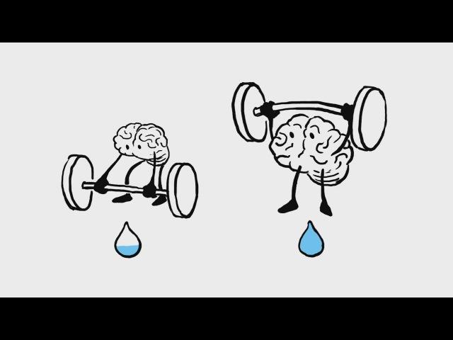 Что будет если не пить воду? [TED-ED]