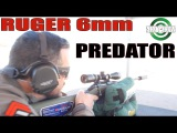1000 Yard Gun For Under $500!  The Ruger American Predator in 6mm