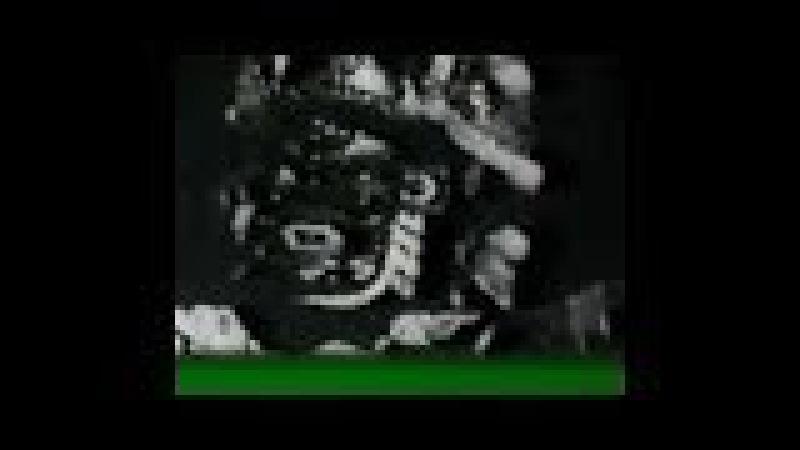 ТАЙНЫ ВЕКА 1992. Мистика Рейха. 4. Тайна Зеленого Дракона (улучшенная версия)