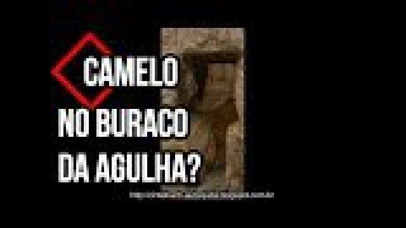 Prosperidade - Camelo no buraco da agulha- Dr.Lair Ribeiro