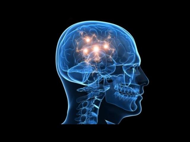 Необычные факты о нашем теле Мозг ytj sxyst afrns j yfitv ntkt vjpu ytj sxyst afrns j yfitv ntkt vjpu ytj sxyst afrns j yf