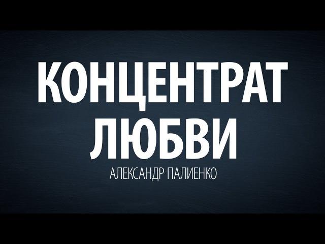 Концентрат любви. Александр Палиенко.
