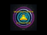 Laughing Buddha - Cymatic