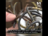 У жителя Чечни удалили из живота 8-метровый зонд, забытый украинскими врачами