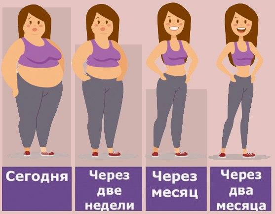 Правили Похудения Тела. С чего начать похудение