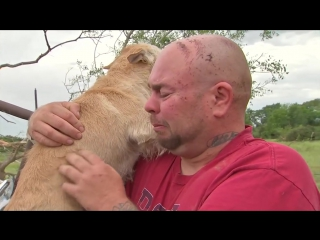 A Family Reunites With Their Dog After A Horrific Tornado _ NowThis