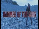 HAMMER OF THE GODS. Folk  Epic  Power Metal Fest. Kyiv, Bingo club. 20.05.2017