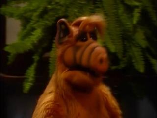 Alf Quote Season 2 Episode 25_Альф и друзья