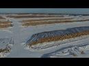 вырубка леса Первомайский район Томской обл