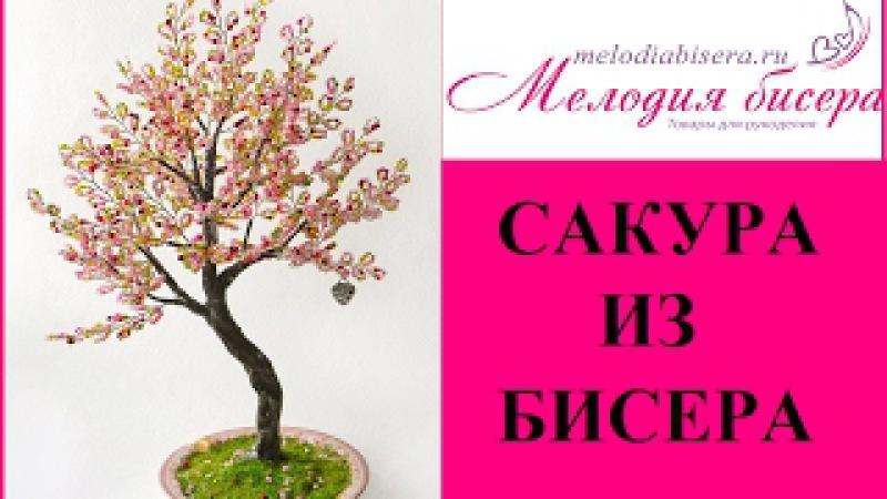 Мастер-класс Дерево из бисера / Сакура. Часть 1. Плетение веточек и сборка