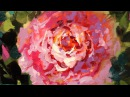Painting Peonies on DVD - Pinkalicious Peonies - 60 Minute Instructional Video Oil Painting Lesson