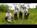 Muzica populara la Vicovu de Jos