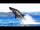 Подводный катер субмарина Seabreacher Тест на пироговке