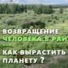 Вебинарный курс Анатолия Орлова