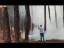 В Неаполе эвакуация жителей и туристов из-за извержения вулкана Везувия и лесных пожаров