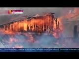 Из-за лесных пожаров режим ЧС введен на всей территории Сиби