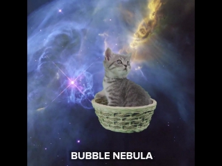 Лучшие фото Хаббла (с котами)