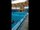 Ваня на курсе дельфинотерапии.... плавание с дельфинами