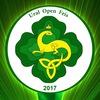 5th Ural Open Feis 4-5 марта 2017