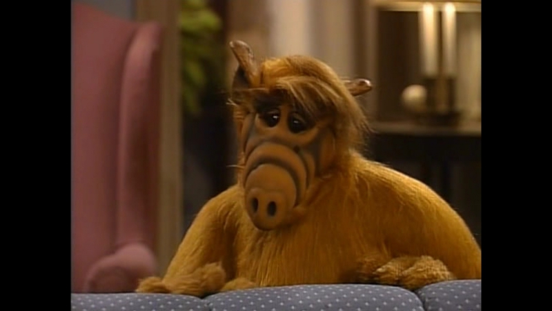 Alf Quote Season 4 Episode 2 _Альф и Вилли