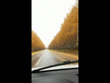 Осень, осень, ну давай у листьев спросим...