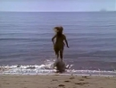 Девочка из океана / Ocean Girl / Сезон 3. Серия 1