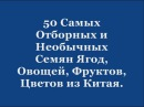 50 Самых Отборных и Необычных Семян Ягод, Овощей, Фруктов, Цветов из Китая.