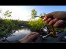 Рыбалка на красивой лесной речке / Ловля Щуки на воблеры с Алиэкспресс