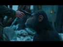 War for the Planet of the Apes - All BEST Scenes Memorable Moments HD