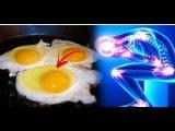 Знаете ли Вы, что может произойти, если съедать по 3 яйца в день Невероятно!