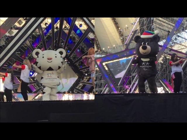(KOR/ENG) 마스코트 이야기 10 The life of PyeongChang 2018 Mascot