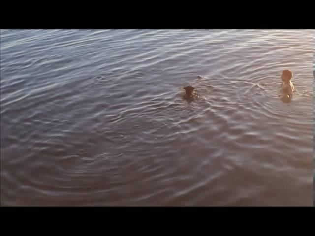 Брейт. Собака-рыболовов. Рыболов-спортсмен. Цвергшнауцер. Ленинград - Рыба моей мечты