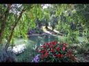 Древняя природа реки Иордан lhtdyzz ghbhjlf htrb bjhlfy
