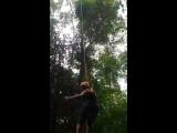 Свободное падение (Полет Гиббона)