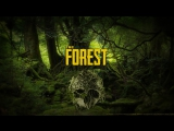 🔴LIVE THE FOREST СТРИМЧАНСКИЙ