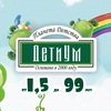 ДетиУм: секции, кружки, студии, МК. СПб
