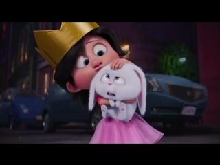 Кролик Снежок и любовь (Тайная жизнь домашних животных)