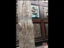 Татьяна Африкантова в прямом эфире 10.11.2017. Идем в музей Зураба Церетели..