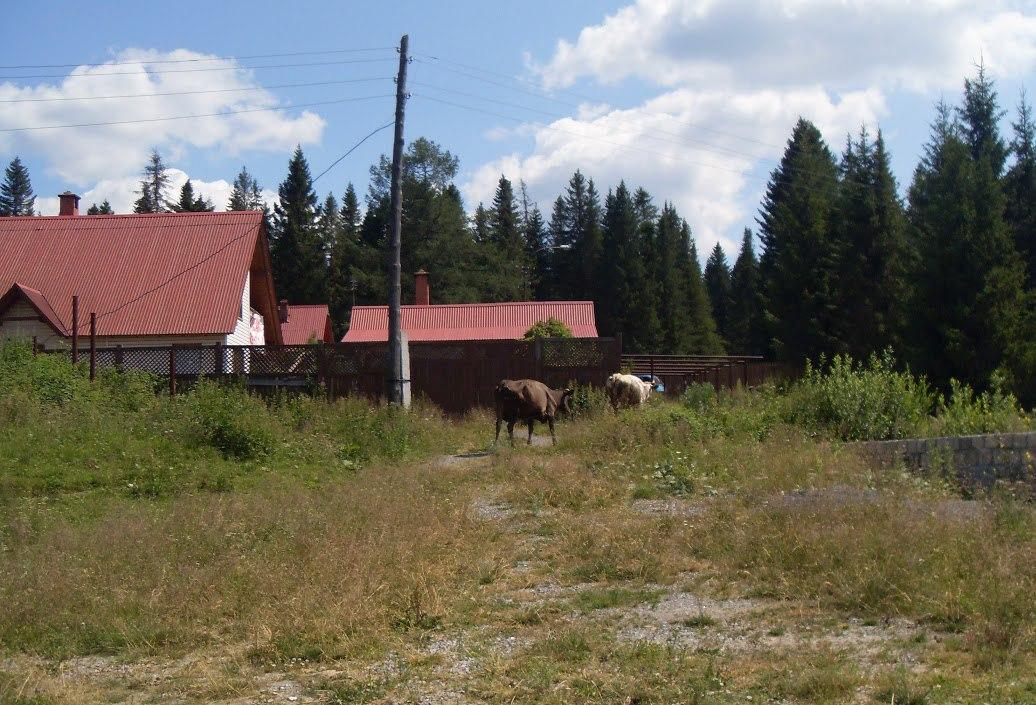 Поселок Зюраткуль - место для пешего туризма