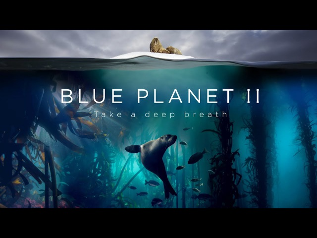 Blue Planet II The Prequel