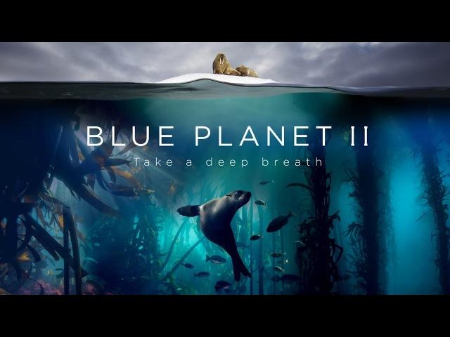 Amazing ! Blue Planet II The Prequel