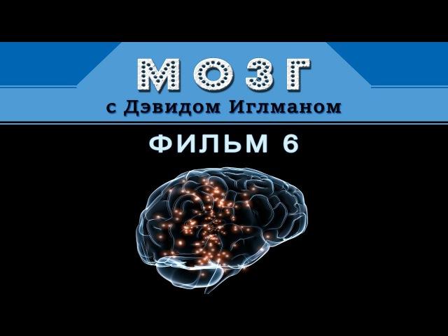 Мозг с Дэвидом Иглманом | Кем мы станем | Фильм 6 || HD 720p