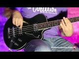 Review Demo - Italia Maranello Cavo Bass