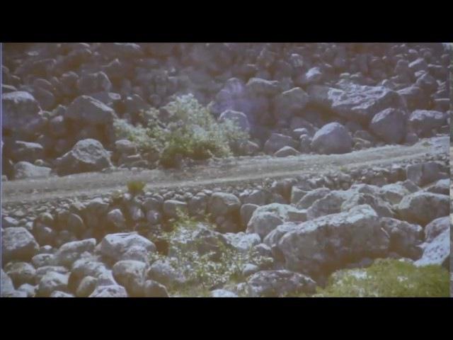 3-19 49 Зигелевские чтения - Игорь МОЧАЛОВ - Кольский перекресток - Глобальная волна